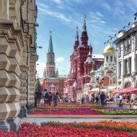 Фестиваль цветов :: Ирина Бирюкова