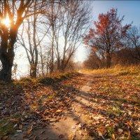 Прикосновение солнца :: Влад Соколовский