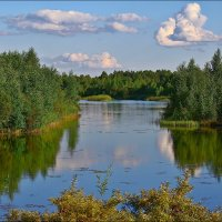 летний пейзаж :: Дмитрий Анцыферов