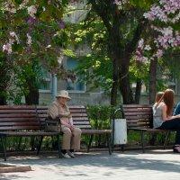 Два полюса весны :: Макс Бушуев