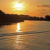 Золотой закат на реке Manavgat :: Alexander Andronik