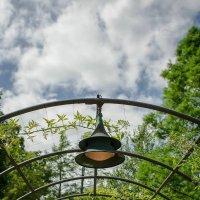 Longwood garden :: Vadim Raskin
