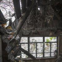 Живите в доме и не рухнет дом... :: Сергей Коновавлов