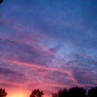 вечернее небо :: Светлана Козлова