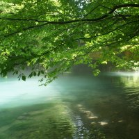 Заповедное Голубое озеро :: Елена Павлова (Смолова)