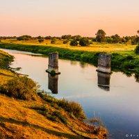 Опоры старого моста :: Игорь Вишняков