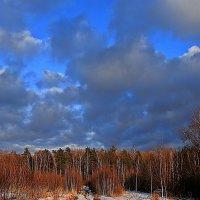 Весеннее небо :: Елена Олейникова