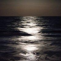Ночное волнение :: Евгений Малахов