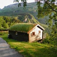 Летняя прогулка по фьорду :: Светлана Игнатьева