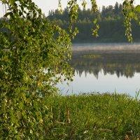 Утро на лесном озере... :: mv12345 элиан