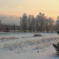 Зима, вечереет.. :: Андрей Дурапов