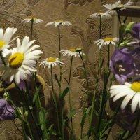 Полевые цветы :: Любовь (Or.Lyuba) Орлова