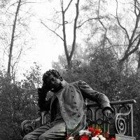 Цветы любимому поэту :: Ирина Фирсова