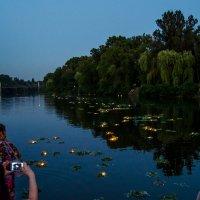 Праздник Ивана-купала. :: Виталий Кабицкий