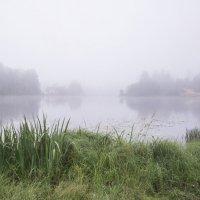 туман на озере :: ник. петрович земцов