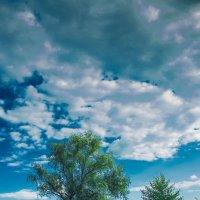 Вид с обратной стороны реки :: Максим Криштоп