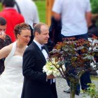 кто сегодня жених, кто невеста... :: Александр Корчемный