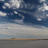 Мёртвое озеро :: Dr. Olver