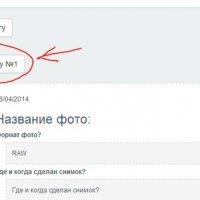 1 :: Анна Венидиктова