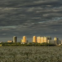 Город растёт :: Юрий Митенёв