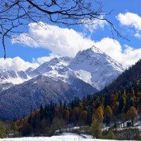 Горы Абхазии. :: Танюша Коc