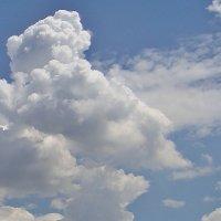 Нежные облака... :: Нина Корешкова
