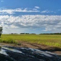 После дождичка, в четверг! :: Serz Stepanov