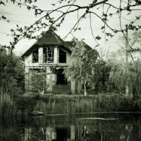 Дом без людей ... и без привидений. Наверное... :: Victory Kryuchkova
