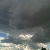 Ну и погодка... :: Света Кондрашова