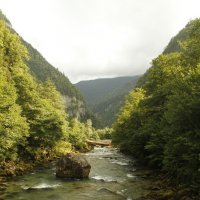 Горная река в Абхазии :: esadesign Егерев
