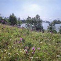 На берегу Ферапонтова озера :: Валерий Талашов