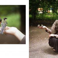 Воронцовский парк :: Астарта Драгнил