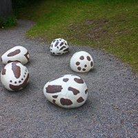 Окаменевшие яйца динозавра.(Скансен) :: Александр Лейкум
