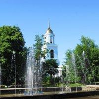 Кафедральный собор. :: Александр Владимирович Никитенко