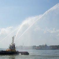Балтийск, на день ВМФ 2014 :: Екатерина Калашникова