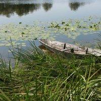 Старая лодка :: Римма Алеева