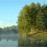 В одно прекрасное утро. :: Андрей Русинов