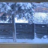 За окном зима :: Григорий Кучушев