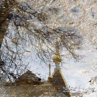 Весенние отражения :: Igor Khmelev