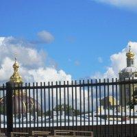 Вид на комплекс Петропавловской крепости. :: Самохвалова Зинаида