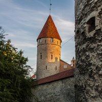 Башня Столтинги :: Анатолий Мигов