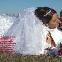 Свадьба Лизы и Саши :: Алексей Куст