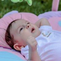 Отдых на траве) :: Tanya Larina