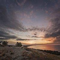 Утро на дюне :: Владимир Самсонов