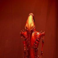 Red. :: aWa