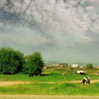 Вот моя деревня! :: Дарья