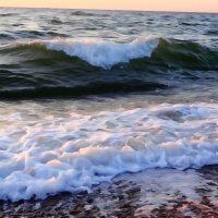 Wave :: Андрeй Владимир-Молодой