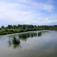 Река пошла на убыль . :: Мила Бовкун