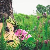 Гитара и природа :: Елена Лакатун