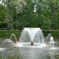 Китовый фонтан :: Елена Каталина
